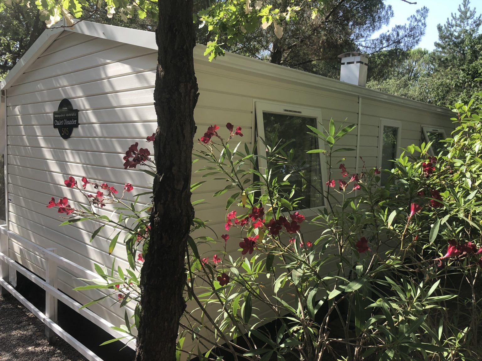 Rondom oleanders en onder de dennenbomen